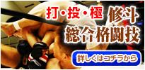 打・投・極 修斗 総合格闘技